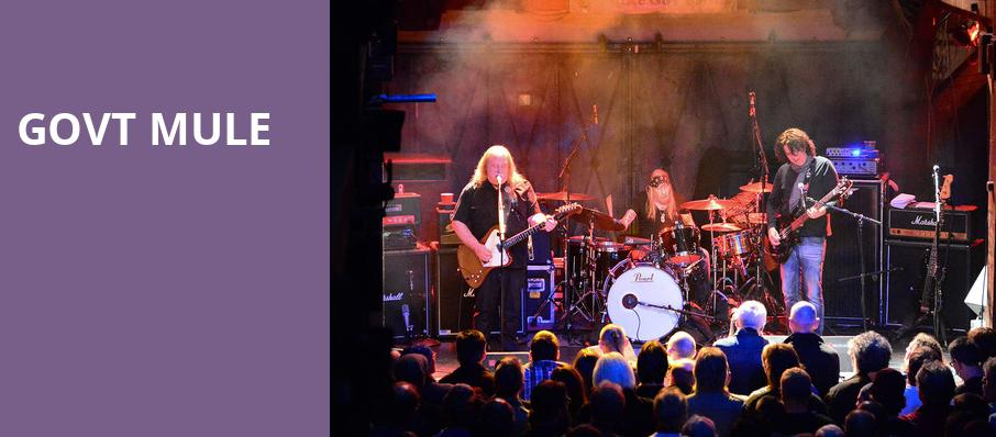 Govt Mule, Crossroads, Kansas City