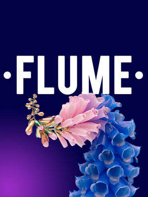 Flume, Arvest Bank Theatre at The Midland, Kansas City